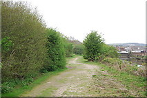 TQ4210 : Sussex Ouse Valley Way, Railway Land LNR by N Chadwick