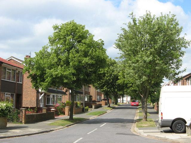 Allendale Road
