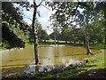 SO6386 : Pond beside a dismantled railway line by Row17