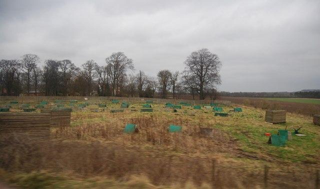Rabbit hutches, Fourton Bank