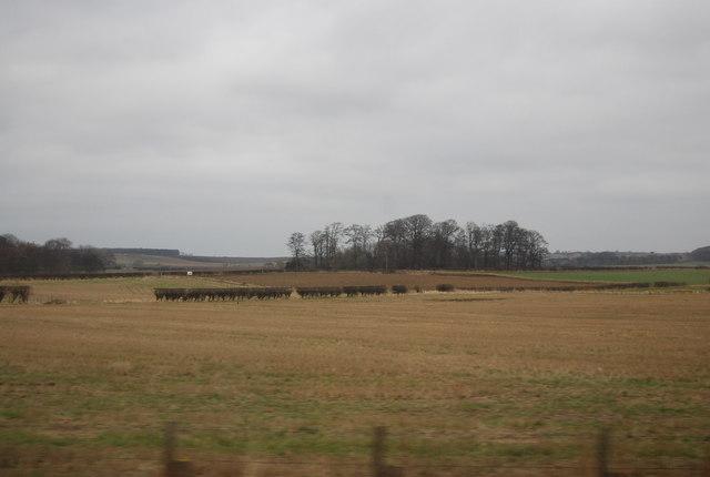 Farmland, East Fortune