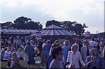 TQ2472 : In Aorangi Park by Barry Shimmon