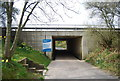 TQ1632 : West Sussex Literary Trail goes under the A24 by N Chadwick