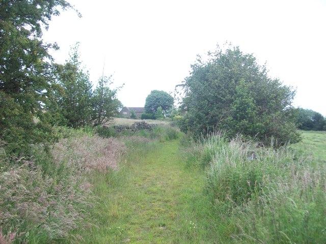 Footpath near Peasunhurst