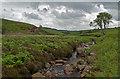 NZ0443 : Waskerley Beck by Trevor Littlewood