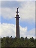 NZ1759 : The Liberty Monument, Gibside by David Dixon