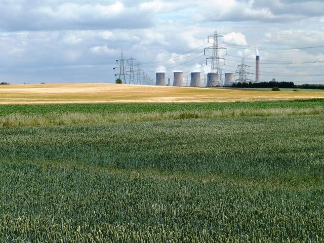Green field, yellow field