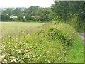 SU6035 : Downland by Nettlebed Farm by Colin Smith