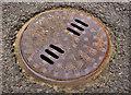 J4874 : Adams manhole cover, Newtownards by Albert Bridge