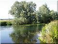 ST9400 : The River Stour, Sturminster Marshall by Maigheach-gheal