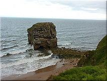 NZ4064 : Marsden Rock by Alexander P Kapp
