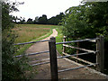 TL3904 : NCN1 leaving St Leonard's Road by Stephen Craven