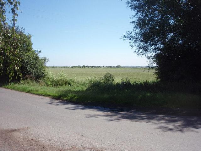 Farmland at River Bank