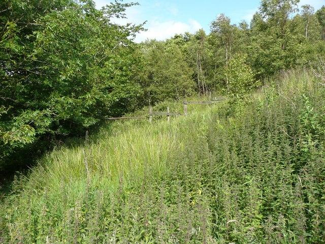 Line of Hebden Royd Path 61 east of Brink Top, Mytholmroyd