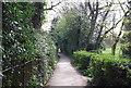 TQ1731 : West Sussex Literary Trail, Horsham Park by N Chadwick