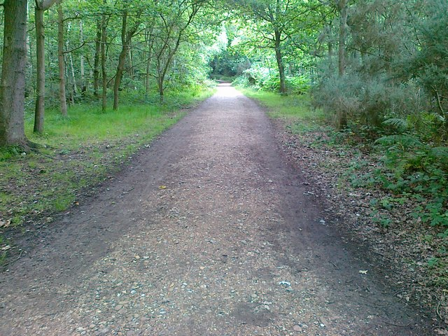 Pathway, Putney Heath