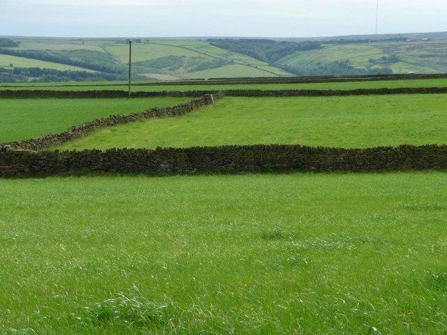Drystone walls, south of Intake Lane