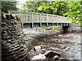 NY9028 : Footbridge over Bow Lee Beck by David Dixon