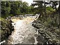 NY9027 : River Tees from Wynch Bridge by David Dixon