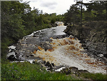 NY9027 : River Tees, Low Force by David Dixon