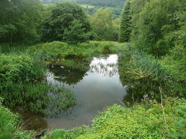 Pond off Scout Bottom Lane, Mytholmroyd
