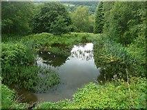 SE0125 : Pond off Scout Bottom Lane, Mytholmroyd by Humphrey Bolton