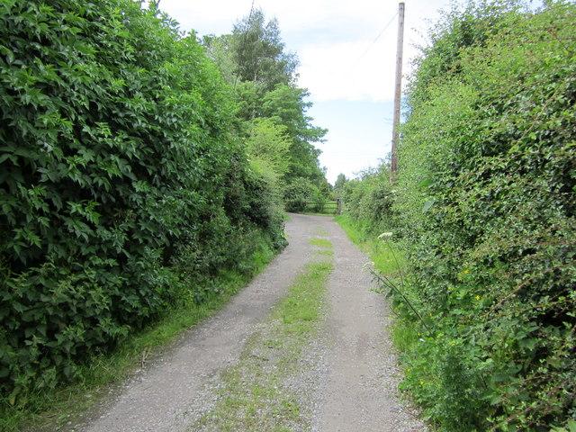Lane near Swinfordmill Farm