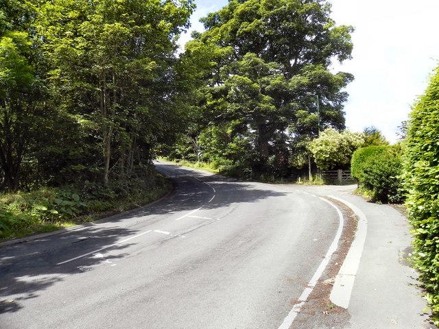 Lartington Lane, Barnard Castle