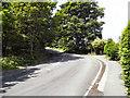 NZ0416 : Lartington Lane, Barnard Castle by David Dixon