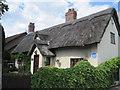 SJ6174 : Raintub Cottage by Sue Adair