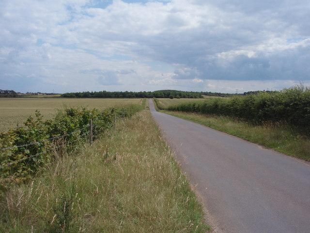 Road to Essendine