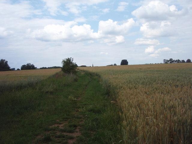 Footpath to Braceborough