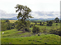 NY7914 : View from Brough Castle by David Dixon