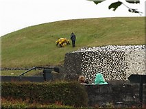 O0072 : A remote control grass cutter on the roof of the Newgrange Tomb by Eric Jones
