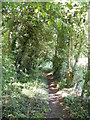 TM3764 : Footpath to St.Peter's Church through Gardeners Belt by Adrian Cable