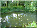 SU6759 : Clear water of the Loddon by Sandy B