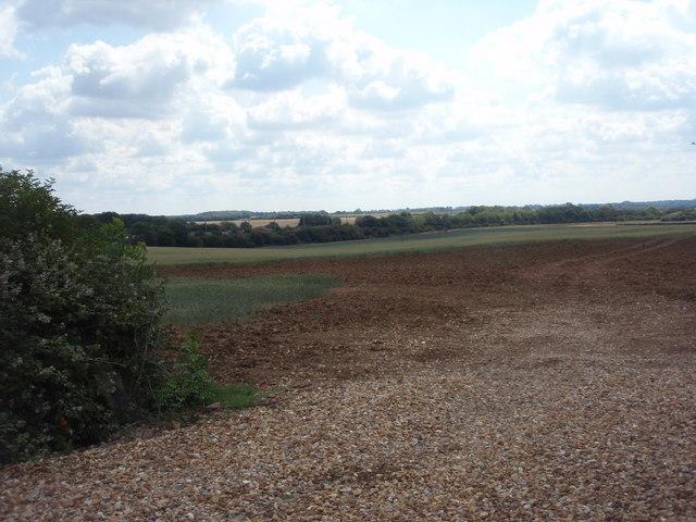 Farmland near Essendine