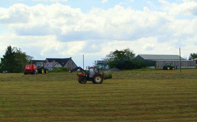 Haymaking, West Fannyside