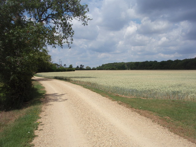 Track to Racer Farm