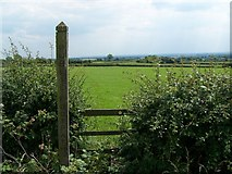 SK1024 : Footpath From Bromley Wood by Geoff Pick