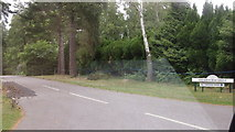 SU9667 : Sherbourne Drive from West Drive, Wentworth Estate, Surrey by John Fielding