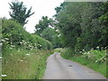 TL0318 : Lane to Kensworth by Oast House Archive