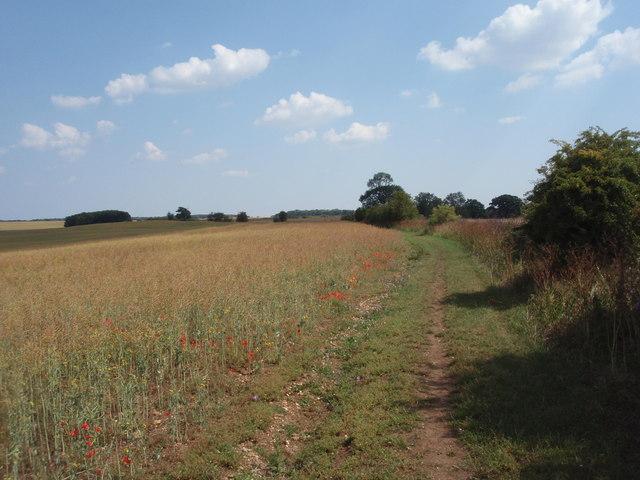 Rural Bridleway
