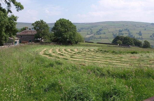 Grass field, Heathfield