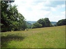 SK2952 : Footpath in Fields near Gorseybank by Jonathan Clitheroe