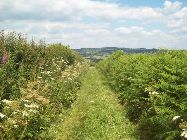 Public Footpath Joining Broad Way