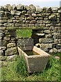 SE1366 : Drinking trough above Low Wood by Derek Harper