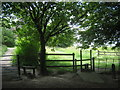 TQ5672 : Two stiles in Darenth Country Park by David Anstiss