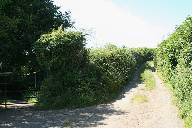 Peter Tavy: West Devon Way