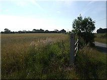 T0417 : Arable farmland by John M